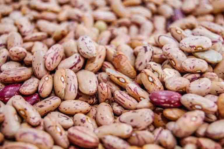 8. Ensalada de alubias con pimentón