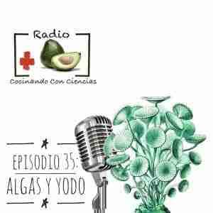 episodio 35: algas y exceso de yodo