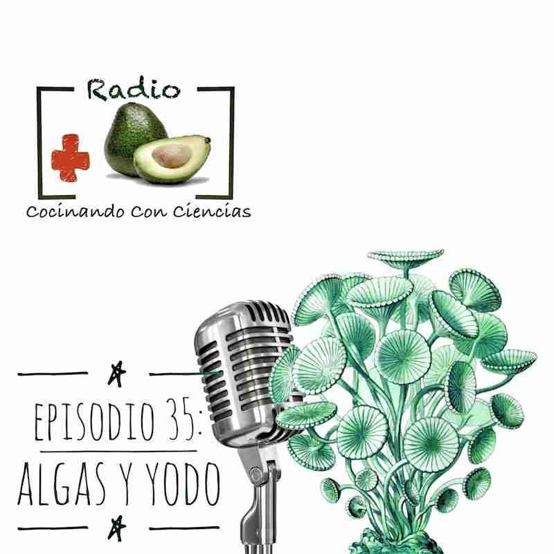 Episodio 34: Algas y exceso de yodo
