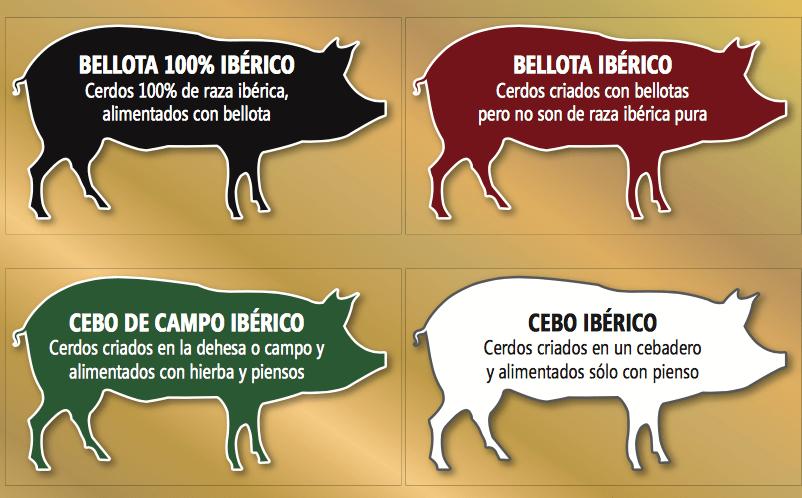Tipos de cerdo ibérico